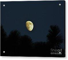 Waxing Moon Over Florida Acrylic Print