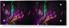 Way Cool Acrylic Print by Dennis James