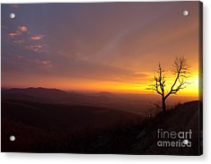 Acrylic Print featuring the photograph Way Of The Morning by Everett Houser