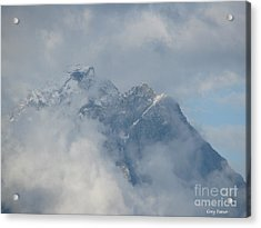 Way Up Here Acrylic Print by Greg Patzer