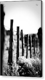 We Are All Fenced In Acrylic Print