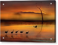 We Are Here Waiting For You Acrylic Print