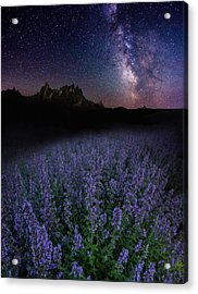 We Are Just Visitors Here  Acrylic Print by Aaron J Groen