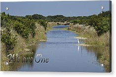 We Are One Acrylic Print