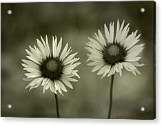 We Are Two Of A Kind Acrylic Print