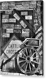 We Love Rabbit Hash Bw Acrylic Print by Mel Steinhauer