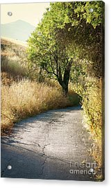 Acrylic Print featuring the photograph We Will Walk This Path Together by Ellen Cotton