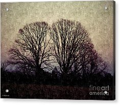 Weary Winter Acrylic Print