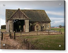 Weathered Barn Of Skagit County Acrylic Print by Kent Sorensen