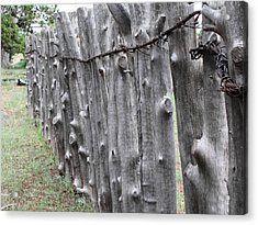 Acrylic Print featuring the photograph Weathered by Natalie Ortiz