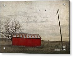 Weathered Red Barn Acrylic Print by Elena Nosyreva