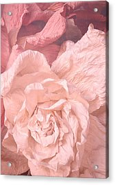 Weathered Roses Acrylic Print