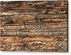 Weathered Wood 5 Acrylic Print by Charles Lupica