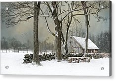Acrylic Print featuring the photograph Weathering by Robin-Lee Vieira