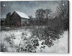 Acrylic Print featuring the photograph Weathering Winter by Robin-Lee Vieira