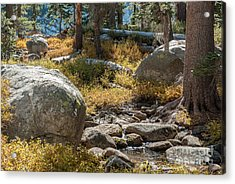 Weaver Lake 1-7699 Acrylic Print