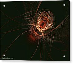 Weaver Of Webs Acrylic Print by Linda Whiteside