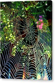 Web Of Entanglement Acrylic Print by Shirley Sirois