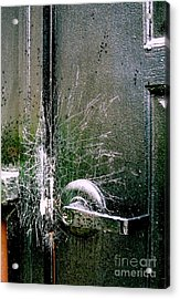 Web Security Acrylic Print by Michael Hoard