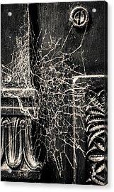 Webs We Weave Acrylic Print