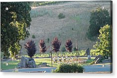 Acrylic Print featuring the photograph Wedding Grounds by Shawn Marlow