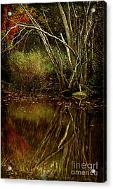 Weeping Branch Acrylic Print