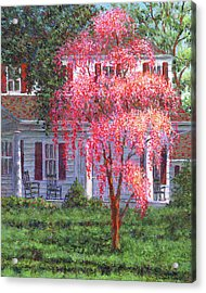 Weeping Cherry By The Veranda Acrylic Print by Susan Savad