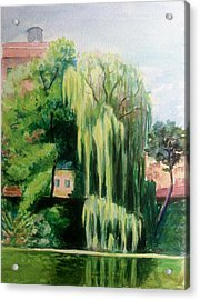 Weeping Willow At North Pond Acrylic Print
