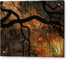 Weeping Willow Sunset Acrylic Print by Bruce Rolff