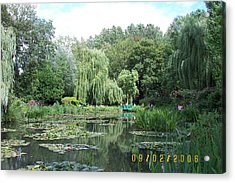 Weeping Willows Acrylic Print by James Dolan