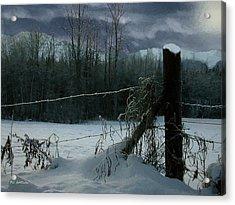 Weeping Winter Moon Acrylic Print by RC deWinter