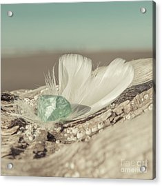 Weighted Feathers Acrylic Print by Lucid Mood