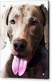 Weimaraner Dog Art - Happy Acrylic Print