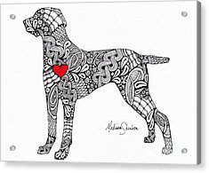 Acrylic Print featuring the drawing Weimaraner by Melissa Sherbon