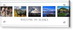 Welcome To Alaska Acrylic Print