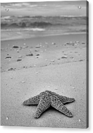 Welcome To Destin Bw Acrylic Print by JC Findley