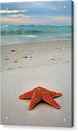 Welcome To Destin Acrylic Print by JC Findley