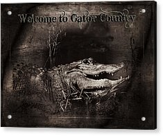 Welcome To Gator Country Acrylic Print by Mark Andrew Thomas