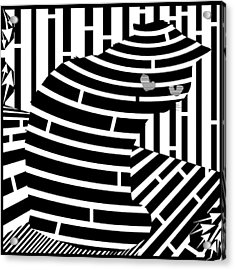 Welcome To The Cat Side Maze Acrylic Print by Yonatan Frimer Maze Artist