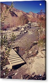 We'll Explore Acrylic Print by Laurie Search