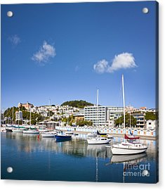 Wellington Oriental Bay Marina New Zealand Acrylic Print by Colin and Linda McKie