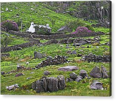 Welsh Mountain Cottage Acrylic Print by Jane McIlroy