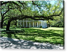 Wesley House And The Oak Acrylic Print by Michele Kaiser