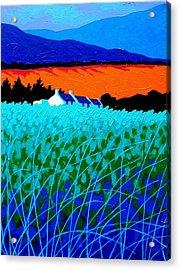 West Cork Landscape Acrylic Print