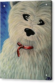 West Highland White Scottish Terrier Acrylic Print by Beril Sirmacek