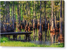 West Monroe Swamp Dock Acrylic Print
