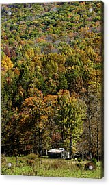 Acrylic Print featuring the photograph West Virginia Color by David Lester