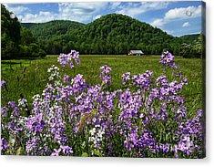 West Virginia Serenity  Acrylic Print by Thomas R Fletcher