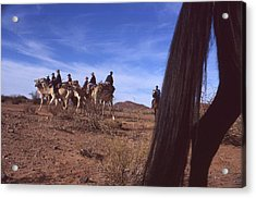 Western Cape Desert South Africa 1996 Acrylic Print by Rolf Ashby