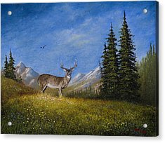 Western Whitetail Acrylic Print by C Steele
